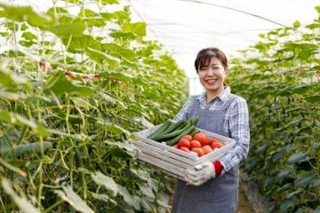 農業のバイト先は1,000カ所以上