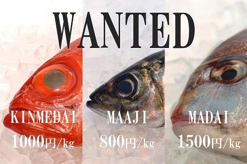釣った魚の買い取り価格