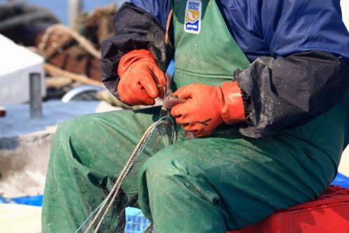 マグロ漁師