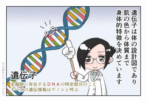遺伝子は体の設計図であり 肌の色から体質まで身体的特徴を決めています