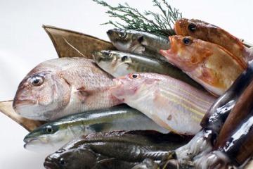 魚のカロリー一覧