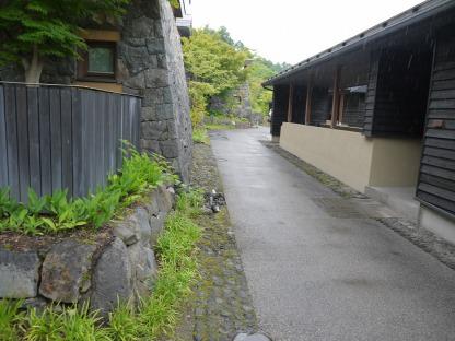 敷地内を散歩する
