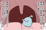 【漫画】風邪に薬は効果なし!早く治すには安静と睡眠